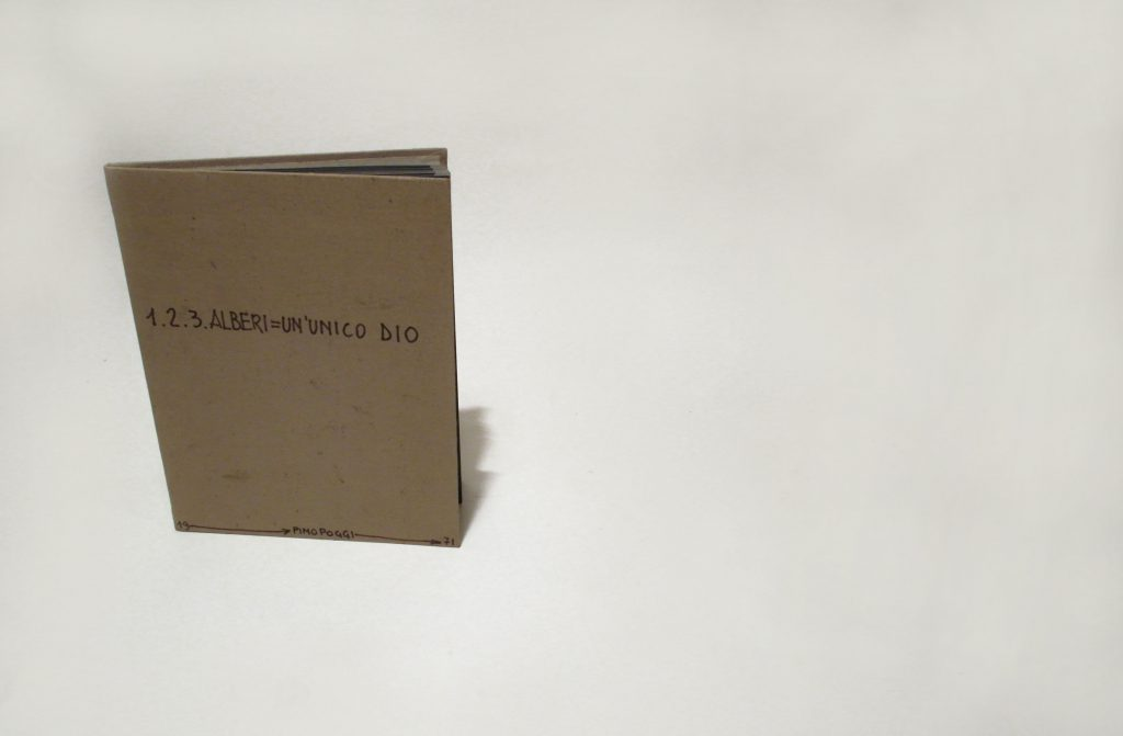 Fanfolded book with carton cover. Shows handwritten title.