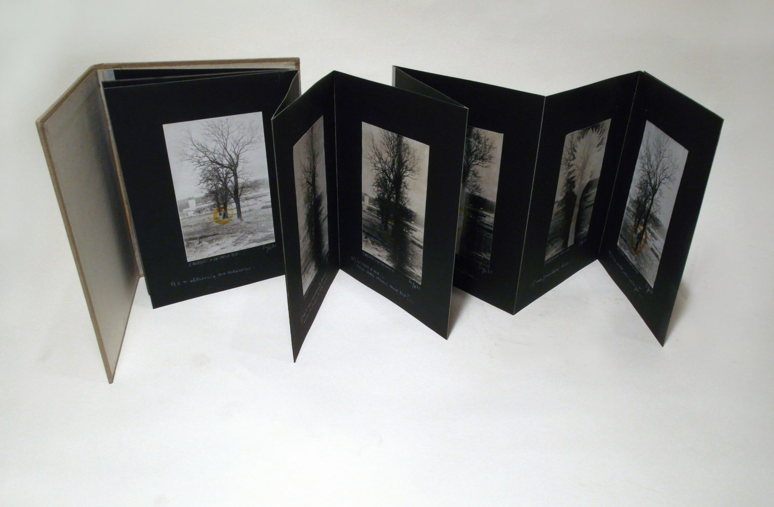 Each pages inside shows a photo of tree. Handwritten notes underneath.