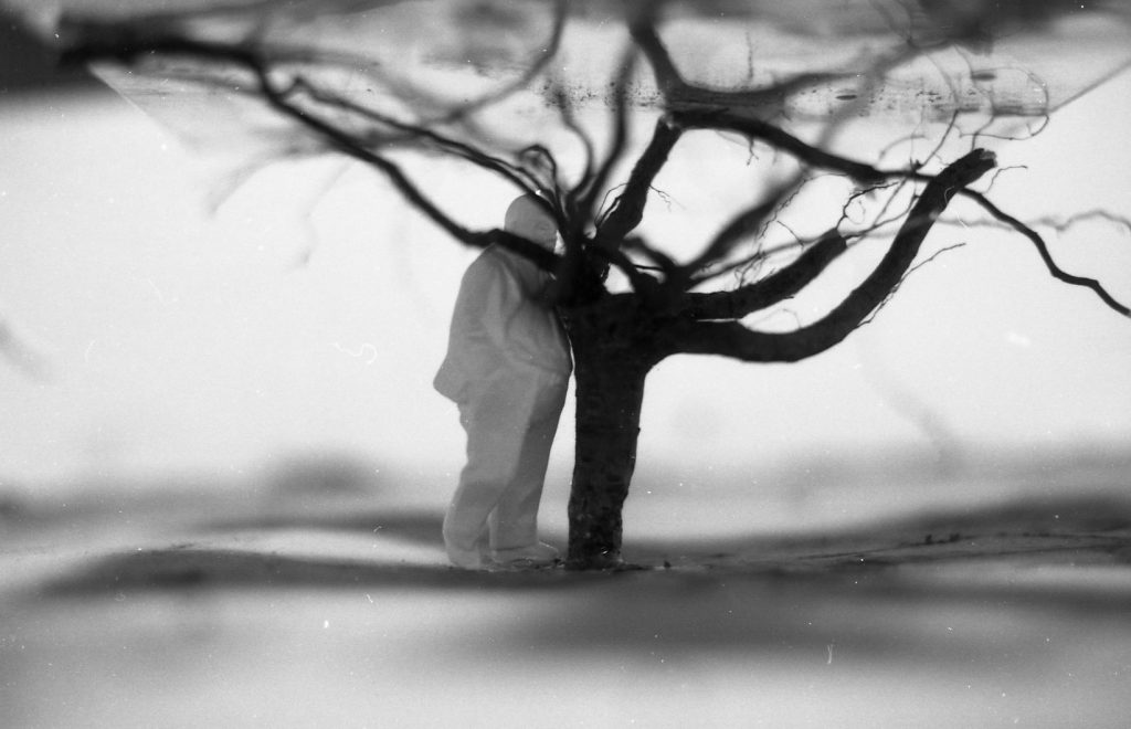 Tree roots rise up from the ground. Figure stands beside roots.