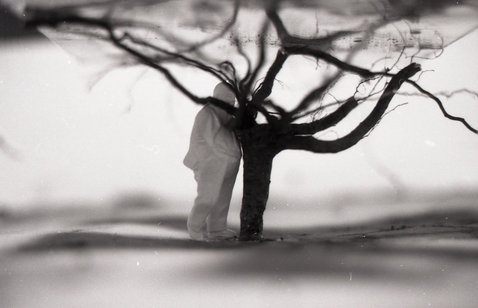 A tree upside down in the ground with a figure beside