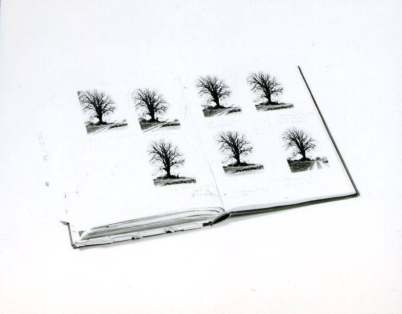 Book pages show various photos of trees and handwritten notes.