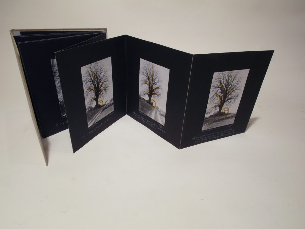Bookpages with a photo of a tree each. Handwritten notes underneath.