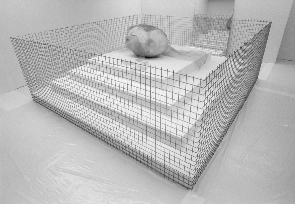 A golden cage in a room. Inside the cage is a podest with a huge white egg on top covered in a metal net. A mirror leans against the wall.