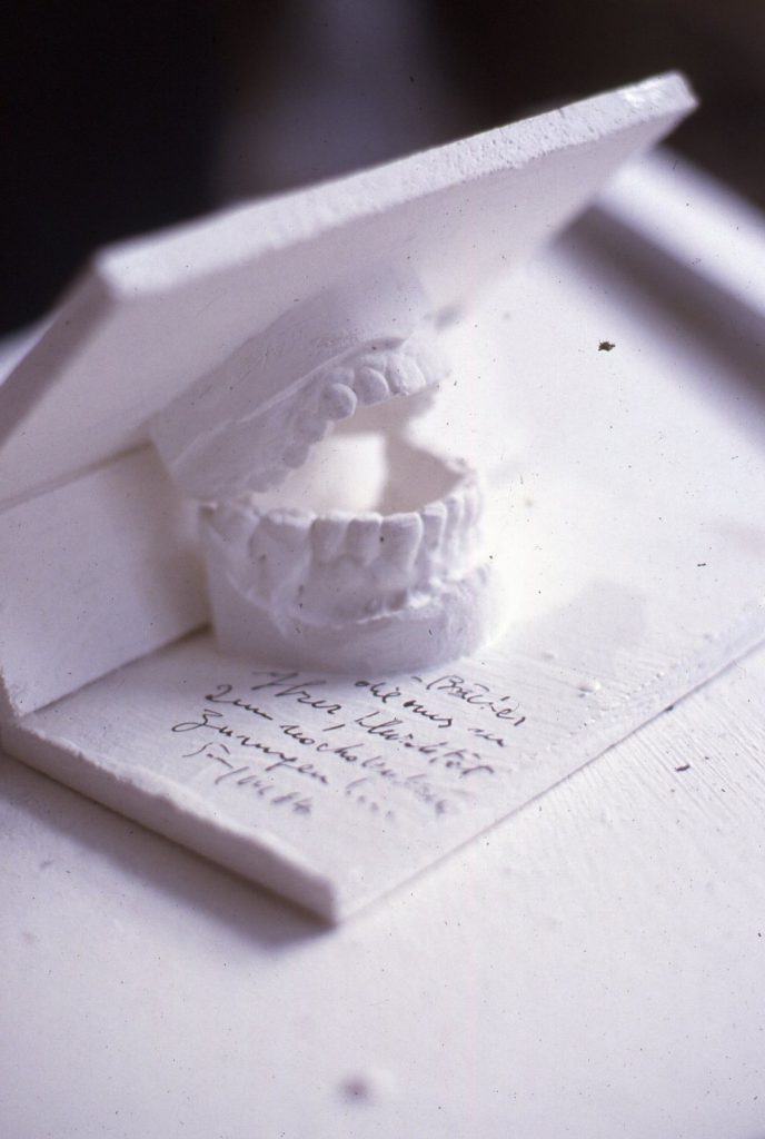 A dentition made of plaster is mounted between front and rear book cover.