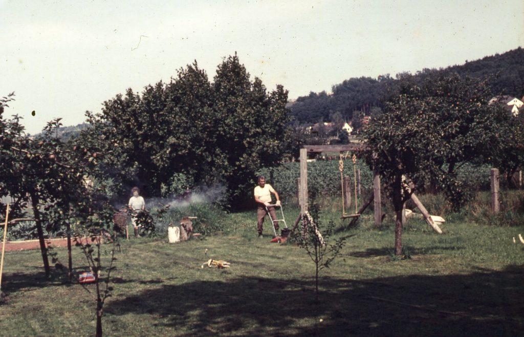 Man is lawn mowing in a garden.
