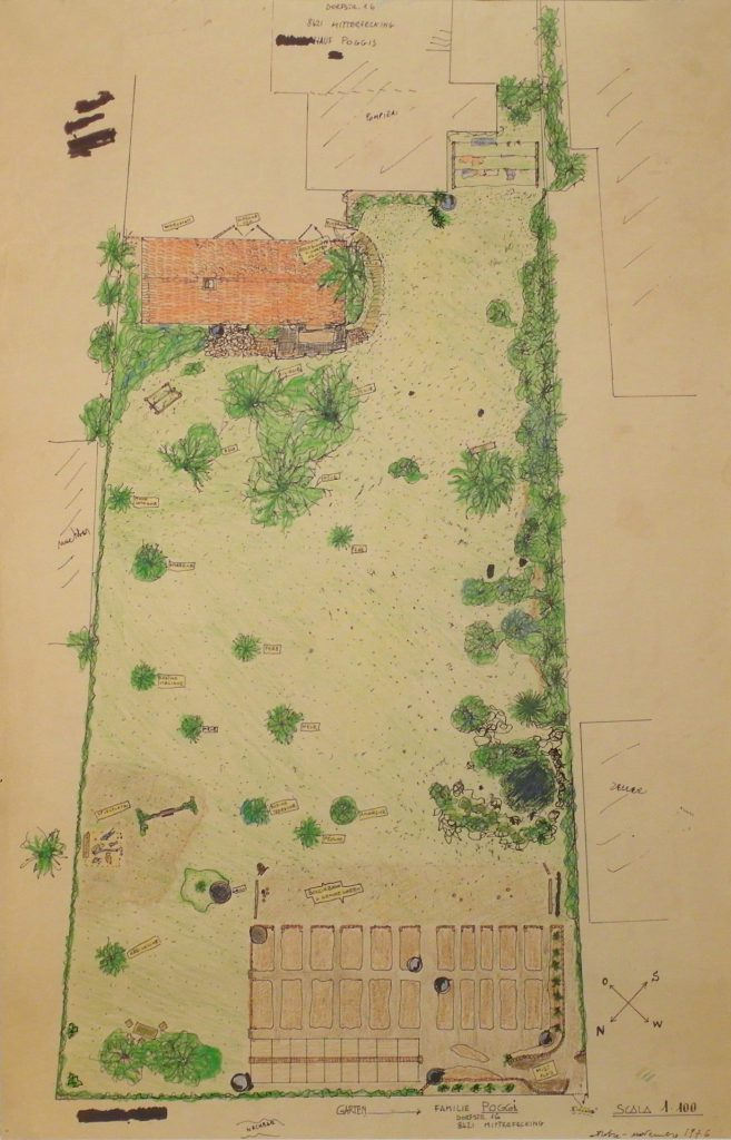 Ground plan of garden terrain. Types of trees noted beside other descriptions.